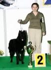XVIII. Mezinárodní výstava psů PRAHA 2009 fotogalerie č.65