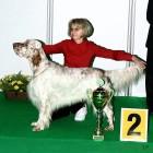 XVIII. Mezinárodní výstava psů PRAHA 2009 fotogalerie č.91