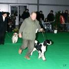 XVIII. Mezinárodní výstava psů PRAHA 2009 fotogalerie č.92