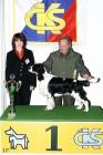 XVIII. Mezinárodní výstava psů PRAHA 2009 fotogalerie č.97