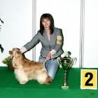 XVIII. Mezinárodní výstava psů PRAHA 2009 fotogalerie č.99