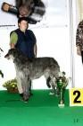 XVIII. Mezinárodní výstava psů PRAHA 2009 fotogalerie č.107