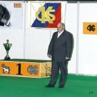 XVIII. Mezinárodní výstava psů PRAHA 2009 fotogalerie č.113