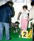 XVIII. Mezinárodní výstava psů PRAHA 2009 fotogalerie č.185