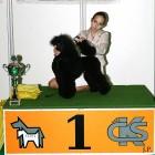 XVIII. Mezinárodní výstava psů PRAHA 2009 fotogalerie č.187