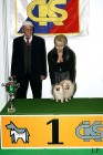 XVIII. Mezinárodní výstava psů PRAHA 2009 fotogalerie č.192