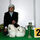 XVIII. Mezinárodní výstava psů PRAHA 2009 fotogalerie č.193