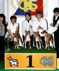 XVIII. Mezinárodní výstava psů PRAHA 2009 fotogalerie č.197