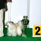XVIII. Mezinárodní výstava psů PRAHA 2009 fotogalerie č.206