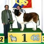 XVIII. Mezinárodní výstava psů PRAHA 2009 fotogalerie č.214