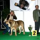 XVIII. Mezinárodní výstava psů PRAHA 2009 fotogalerie č.215