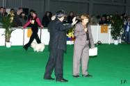 XVIII. Mezinárodní výstava psů PRAHA 2009 fotogalerie č.228