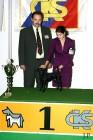 XVIII. Mezinárodní výstava psů PRAHA 2009 fotogalerie č.235