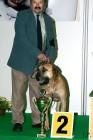 XVIII. Mezinárodní výstava psů PRAHA 2009 fotogalerie č.236