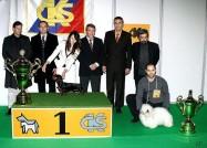 XVIII. Mezinárodní výstava psů PRAHA 2009 fotogalerie č.244