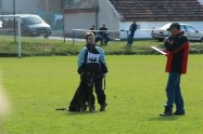 VS pro MS FCI a M ČR Staňkov 3. – 4. 4. 2010