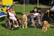 Mistrovství ČR 2012 vodících a asistenčních psů