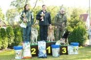 Výběrová soutěž stopařů 28. 9. 2013 Chodov č.4