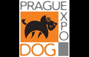 Ohlédnutí za Mezinárodní výstavou psů v Praze